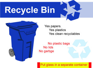 blue bin recyclables